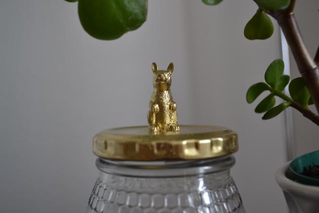 Animal Jar DIY